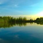Копия photodune-3629421-nature-l