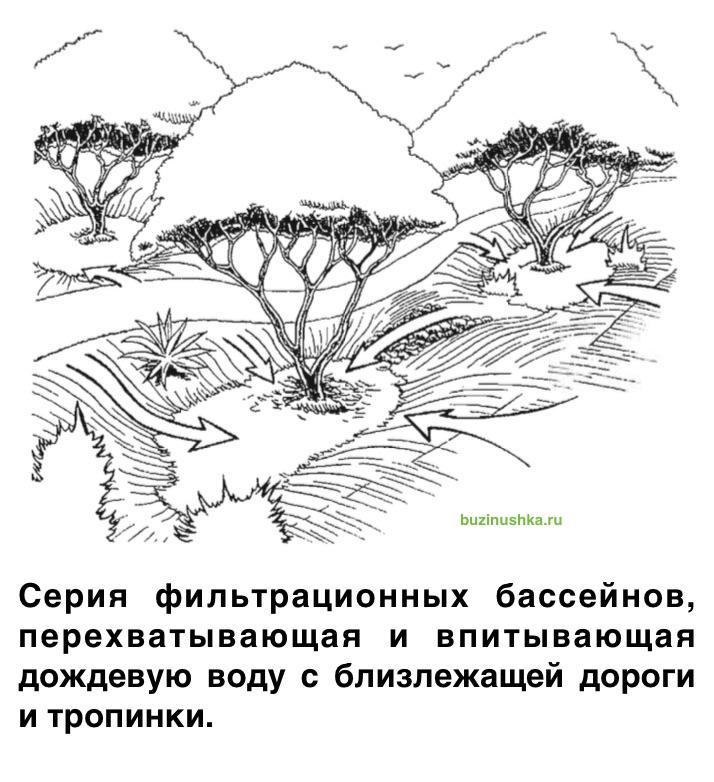 seriya-bassejnov