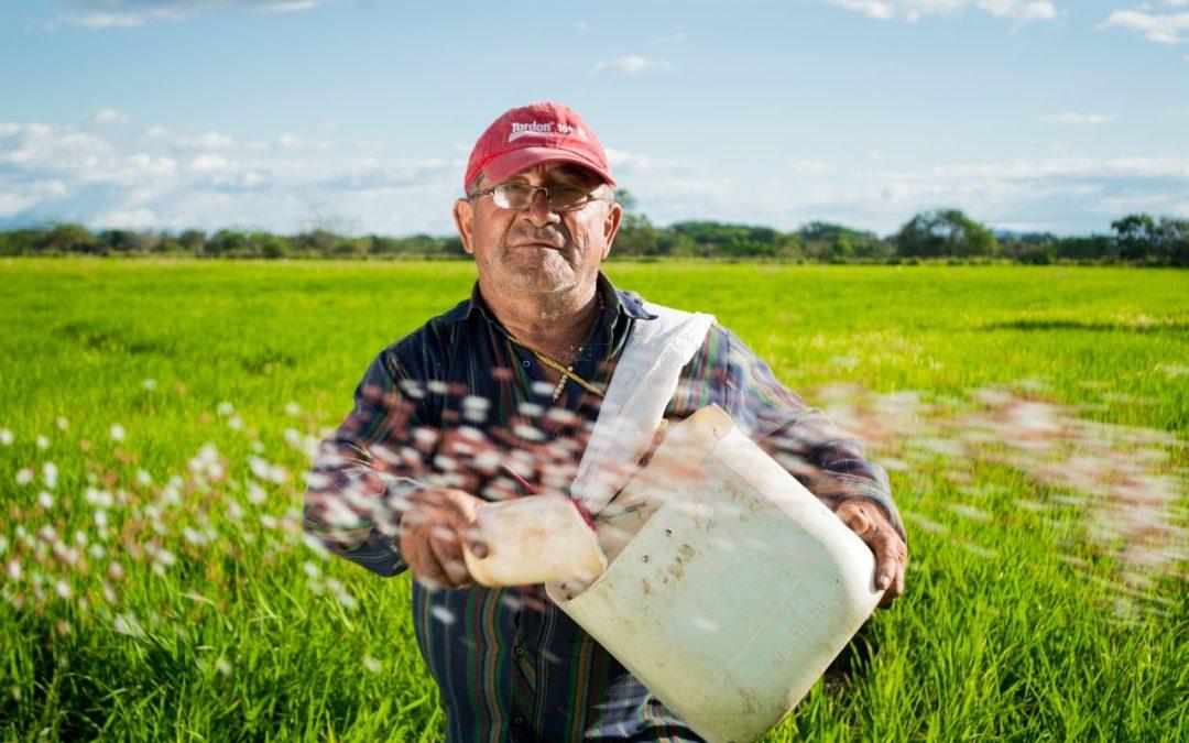 Фермеры кормят мир
