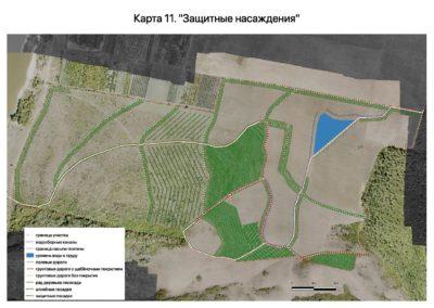 Приложение к проекту землеустройства. Защитные насаждения